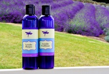 "Lavender Shampoo and Hair Care / Lavender's name comes from the root word ""Lavare"", a Lating word which translates to ""to wash"". We are very proud of our lavender hair care collection. Our lavender shampoo and conditioner will keep your hair healthy and beautiful. / by Ali'i Kula Lavender"