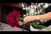 flowers | tutorials