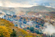 Why We Love Asheville / The Albemarle Inn is proud to be located in the city of Asheville, NC!