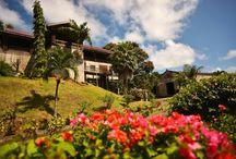 Grenada Belmont Estate
