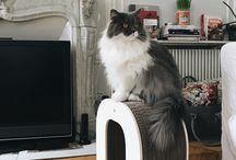 Homycat X Vanessa Pouzet / Vous aimez les chats, la décoration et vous cherchez comment allier l'esthétisme de votre intérieur et les griffades de votre chat ? Ce tableau sera votre meilleure source d'inspiration !   Intérieur et décoration: Vanessa Pouzet Chats : Lynn et Magnum Griffoir en forme de lettre : Homycat