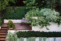 Pools/landscaping
