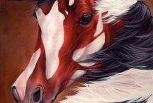 Heste ♥️✌️