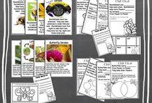 Kindergarten science / by Wendy Wilson Schirmer
