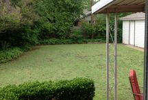 My Dream Backyard / The Scott Brothers might need some ideas to revamp my backyard #pinmydreambackyard  / by Alecia Shannon
