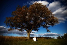 Wedding Photos I Love / by WeddingPhotoUSA