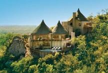 Luxury Safari Holidays - An adventure to remember