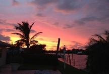 Florida / by Hillary Kelly