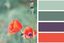 colors for room