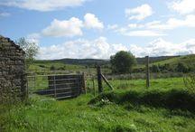 Radurlaub in Irland / Erlebnisradreisen mit dem Fahrrad entlang der Westküste - Kerry, Connemara und Donegal