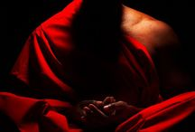 mnisi...spokój...równowaga...