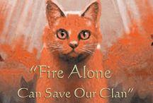 warrior cat prophecys