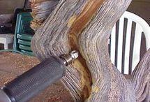 vyużití mrtvého dřeva