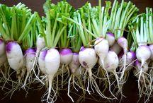 Zelf groente zaaien
