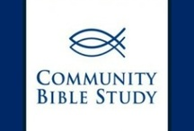 Community Bible Study Europe -international groups