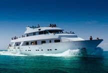 Ocean Flyer / A perfect way, a perfect dream and a perfect yacht! Specialise in coastal cruises, weddings, events and more...
