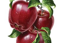 картинки фрукты овощи ягоды