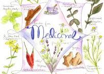 Medicinal Herbs / by Penny Rothenbusch-Souders