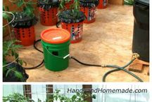 backyard hydrophonics