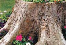 flores em troncos