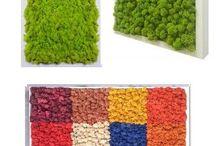 lichene STABILIZZATO reindeermoss / Verde verticale, green design, mossframe, muschio stabilizzato, preserved moss, muschio nordico, vertical green