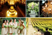 Wedding Ideas for Christa! / by Michelle S