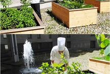 courtyard / Head chef Markus Rotard takes care of the herb garden our sunny courtyard. Fresh herbs for the 360° dinner.