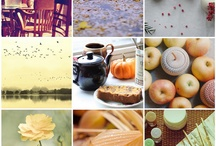Autumn lifestyle / by Cherish Bryck