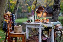 Fall Favorites / by Debbie Abrames