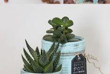recycler des boites de conserve en pots