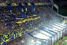 football - the beautiful game / about supporter groups, stadium and actionpics