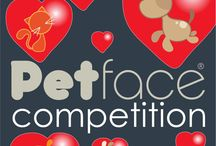 Petface Competitions