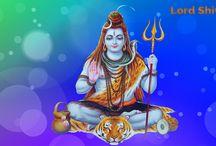 Vashikaran expert in Dehradun / Vashikaran expert in Dehradun Pandit Rk Shastri-+91-9814164256 http://www.panditrkshastri.com/vashikaran-expert-in-dehradun-nainital-haridwar/