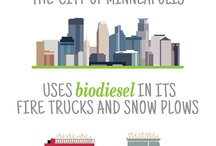The R.E.A.L. Story Infographics / #soy #biodiesel #farm #agriculture #Minnesota