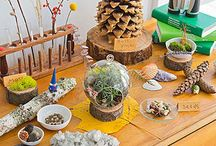 Nature table ideas / by Marie Elaine Toth