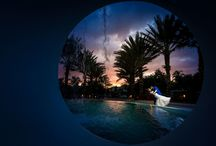 Weddings & Engagements by Steve Daubs Studios / Shared From Pixrit