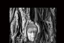 Mes livres / Romans : Les Microbes de Dieu (2011) - Alzheimer... Même toi on t'oubliera (2013) - Goodbye Gandhi (2015) Poésie : Ami de l'autre rive (2014)