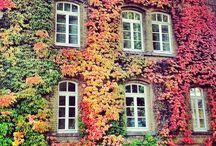 University Göttingen