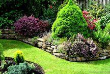 Gardening Ideas / by Sue Mullen Amirault