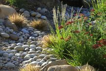 Dry Tolerant Garden / An energy star rated new build (residential) in Central Otago, New Zealand. The owner would like a garden that tolerates little to no watering. So the challenge is to create a garden that looks great, fits in with the style of the house and the surrounding landscape and has street appeal. There also need to be practical areas such as a veggie garden and compost bin.