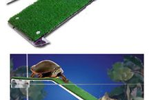 for turtles