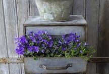 Gardening - Vintage