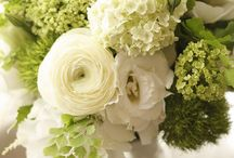 wedding white green♡