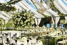 Setting the Scene / Wedding receptions, weddings, wedding decor, event decor, event planner