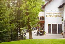 Hotel / Ein paar Impressionen von unserem Haus dem Landhotel & Waldgasthof Lembergblick in Feilbingert