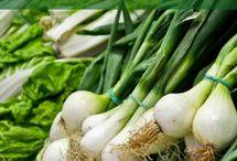 verduras y otros para nuestro bienestar