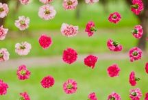 Kukkaasetelmat - Blomsterarrangemang