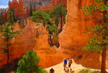 Utah / Hike the world-renowned Zion National Park. Explore the famous hoodoos and hanging gardens of Bryce Canyon National Park. Get wet when you raft the famous waters of the Colorado River. Take in the jaw-dropping views of the iconic Delicate Arch in Arches National Park. From Arches to Canyonlands, Bryce Canyon to Zion, uncover this unbelievable concentration of National Parks with Austin Adventures, the experts in adventure travel.