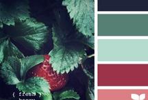 | Inspiration : Colors |
