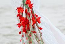 Wedding stuff❤️